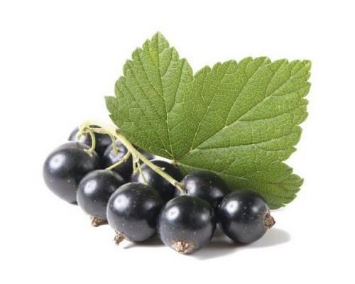 Смородина черная плоды, 50 гр